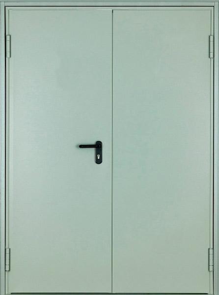 Двухстворчатая техническая дверь asturmadi
