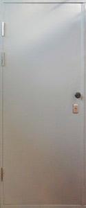 Глухая одностворчатая техническая дверь LS/ОMEGA