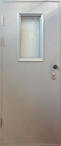 Одностворчатая техническая дверь LS/ОMEGA (стекло)