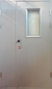 Двухстворчатая техническая дверь LS/ОMEGA (Стекло)